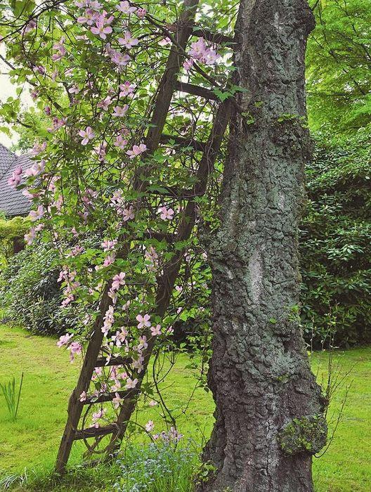 Второе дыхание для старых деревянных лестниц