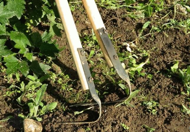Как пользоваться плоскорезом фокина